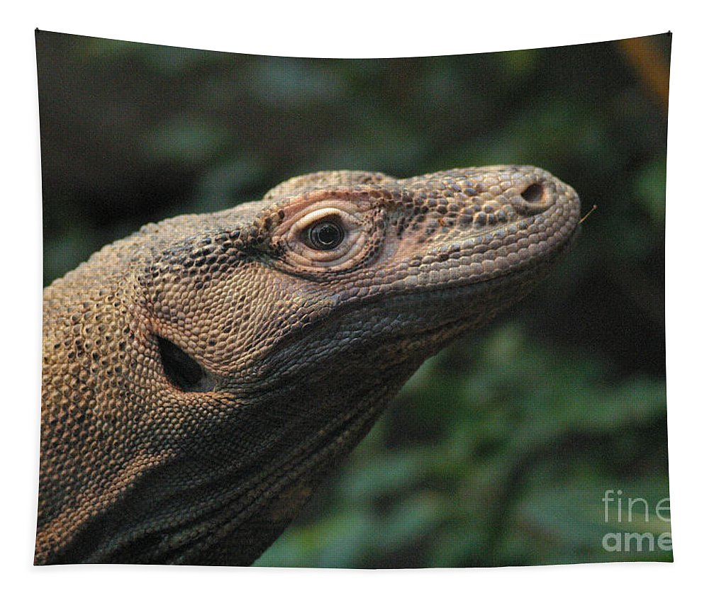 Komodo Dragon Tapestry featuring the photograph Komodo-7399 by Gary Gingrich Galleries