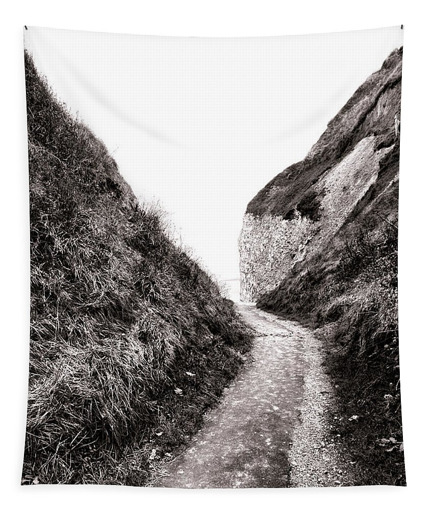 France Tapestry featuring the photograph La Valleuse by Olivier Le Queinec