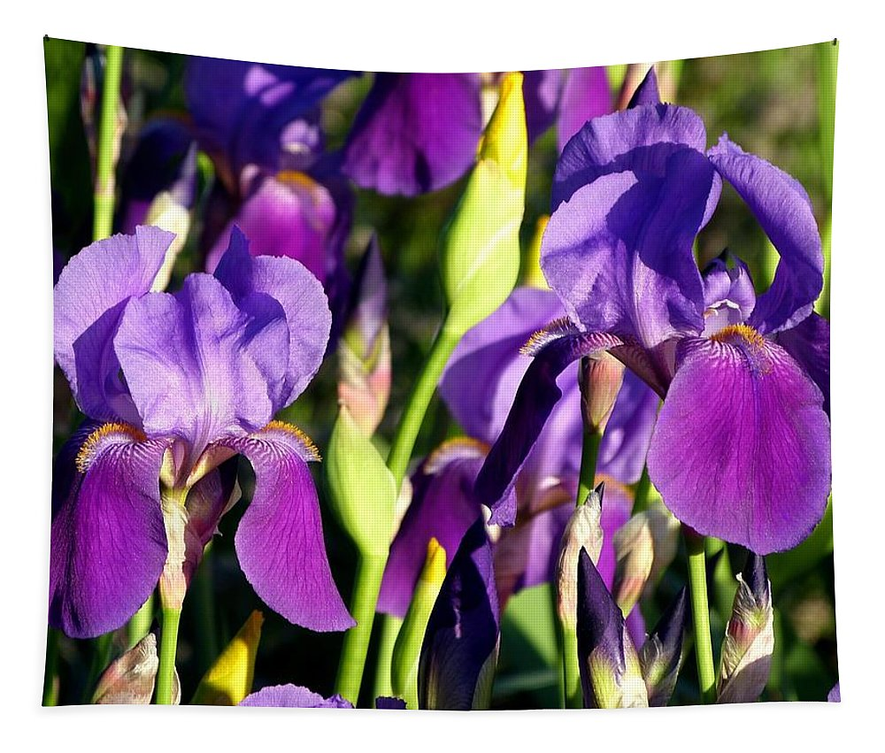 Lake Country Irises Tapestry featuring the photograph Lake Country Irises by Will Borden