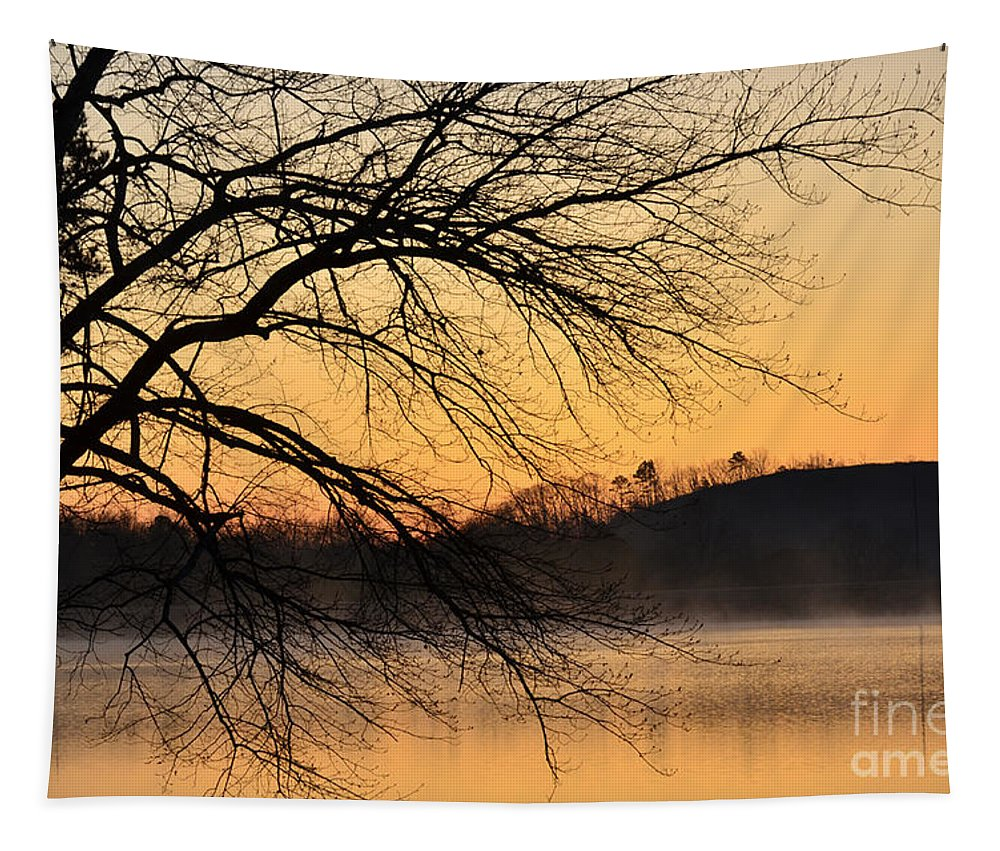 Lake Louise Tapestry featuring the photograph Lake Louise Sunrise Through The Trees by Donna Brown