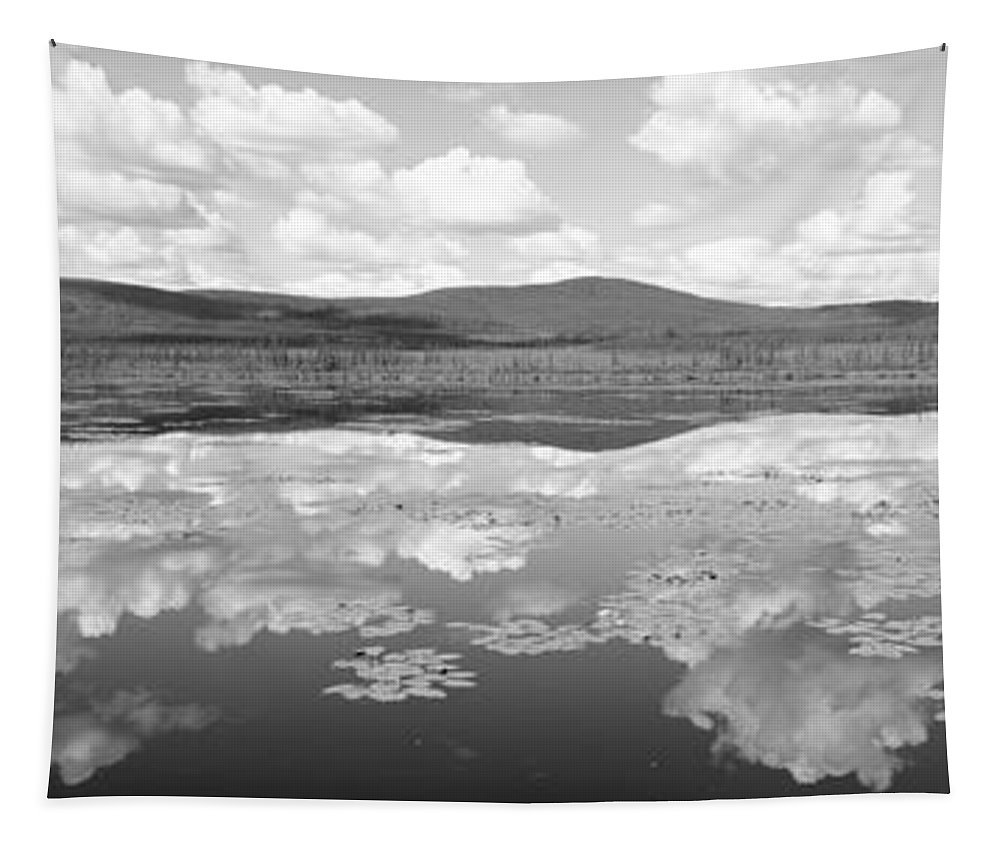 Photography Tapestry featuring the photograph Lake Near Beaver Creek. Yukon by Panoramic Images