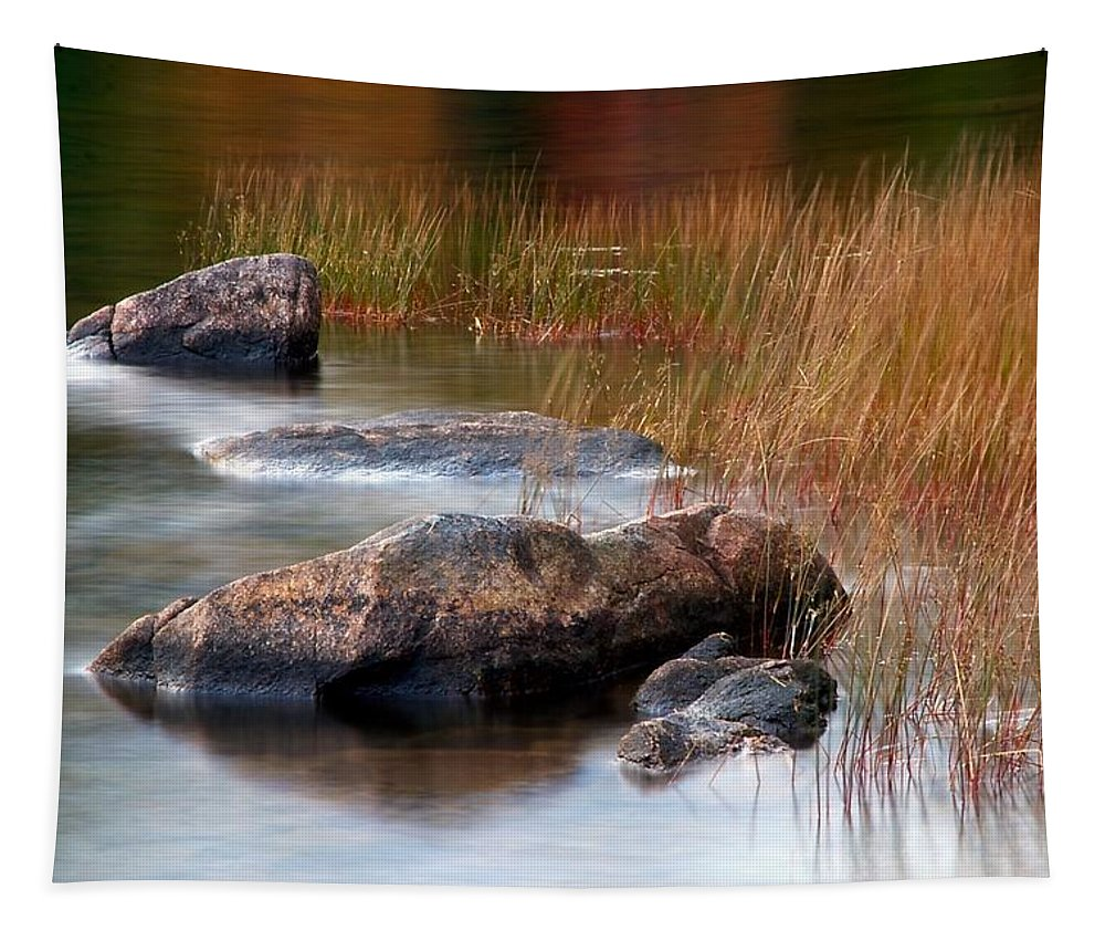 Eagle Lake Tapestry featuring the photograph Lake Rocks And Grass by Stuart Litoff