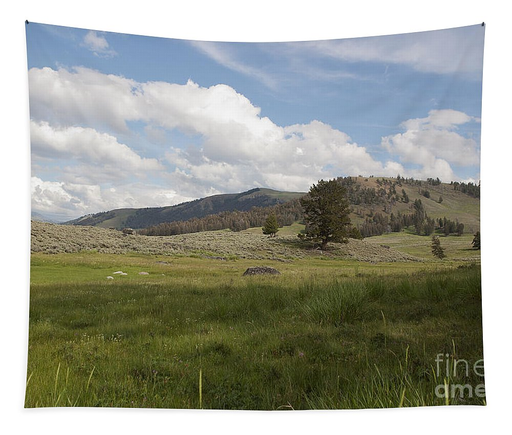 Lamar Valley Tapestry featuring the photograph Lamar Valley No. 2 by Belinda Greb