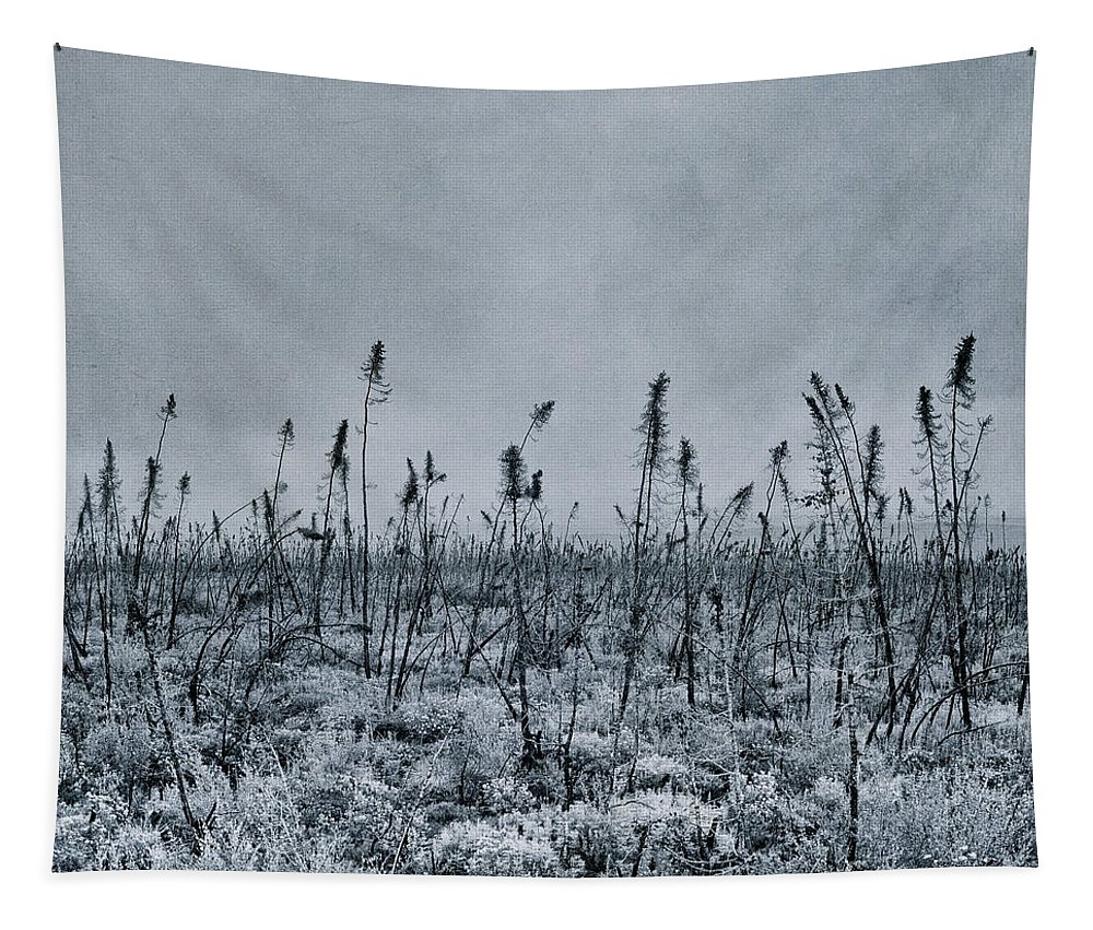 Tapestry featuring the photograph Land Shapes 20 by Priska Wettstein