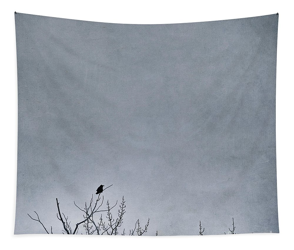 Nature Tapestry featuring the photograph Land Shapes 8 by Priska Wettstein