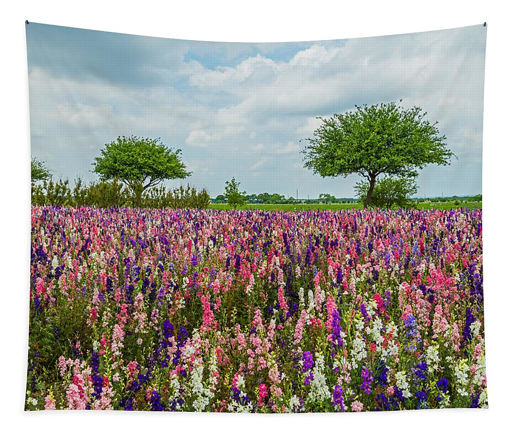 Texas Tapestry featuring the photograph Larkspur Fields Forever by Lynn Bauer