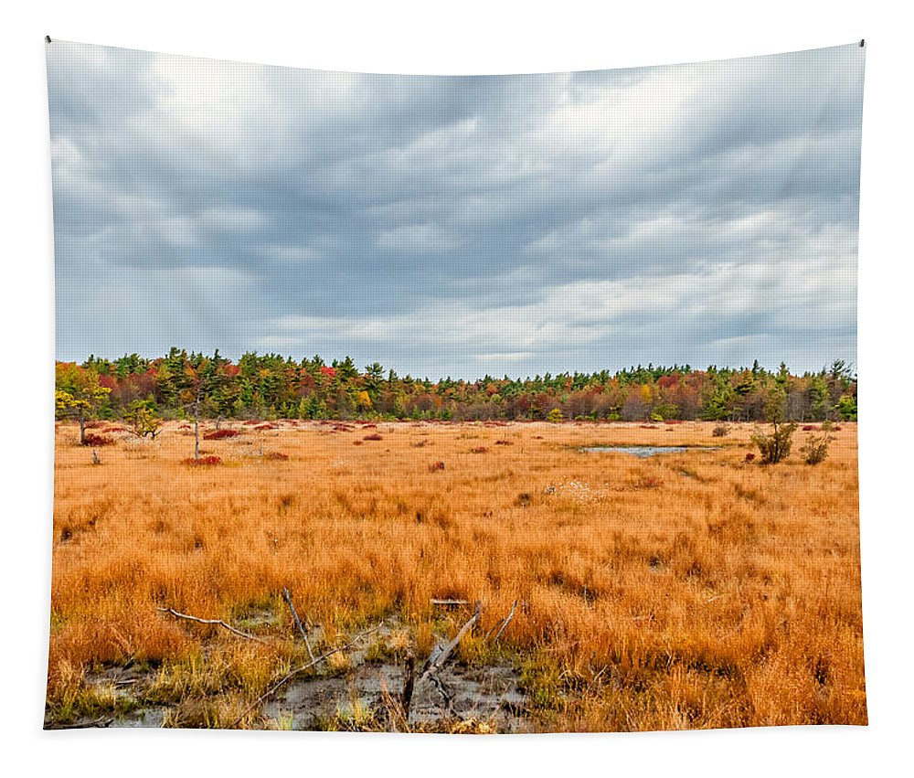 Autumn Tapestry featuring the photograph Laurel Summit State Park Bog by Steve Harrington