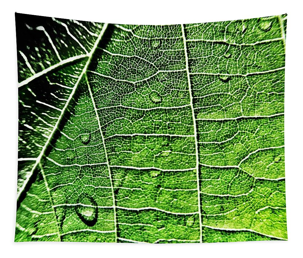 Leaf Tapestry featuring the photograph Leaf Abstract - Macro Photography by Marianna Mills
