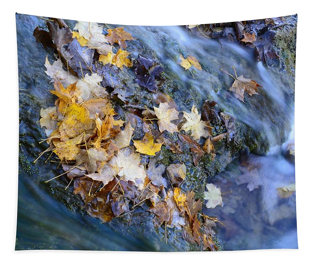 Water Tapestry featuring the photograph Leaf Island by Bonfire Photography