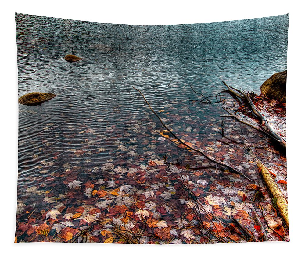 Adirondack's Tapestry featuring the photograph Leaves In The Lake by David Patterson
