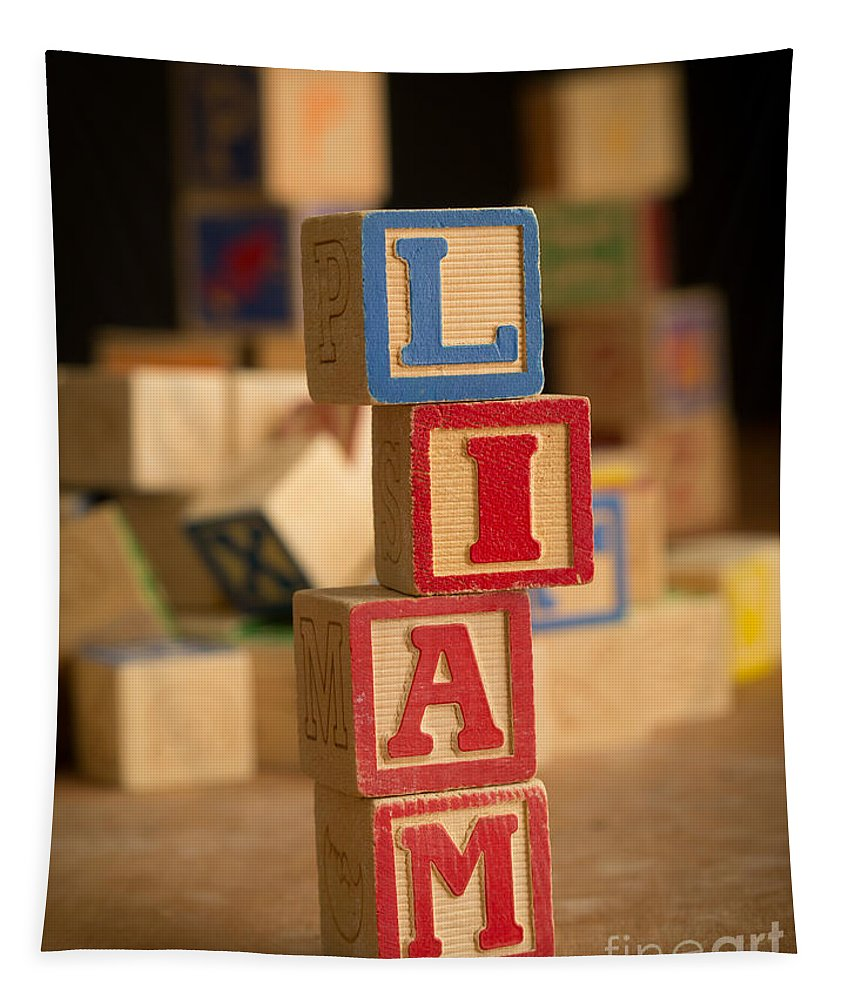Alphabet Tapestry featuring the photograph Liam - Alphabet Blocks by Edward Fielding