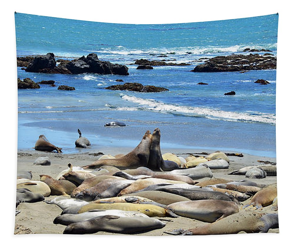 Seal Tapestry featuring the photograph Life At The Rookery by Lynn Bauer