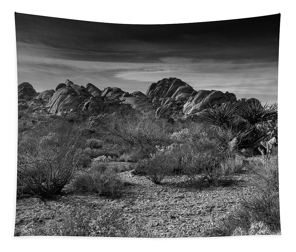Mojave Desert Tapestry featuring the photograph Life In The Desert by Mountain Dreams