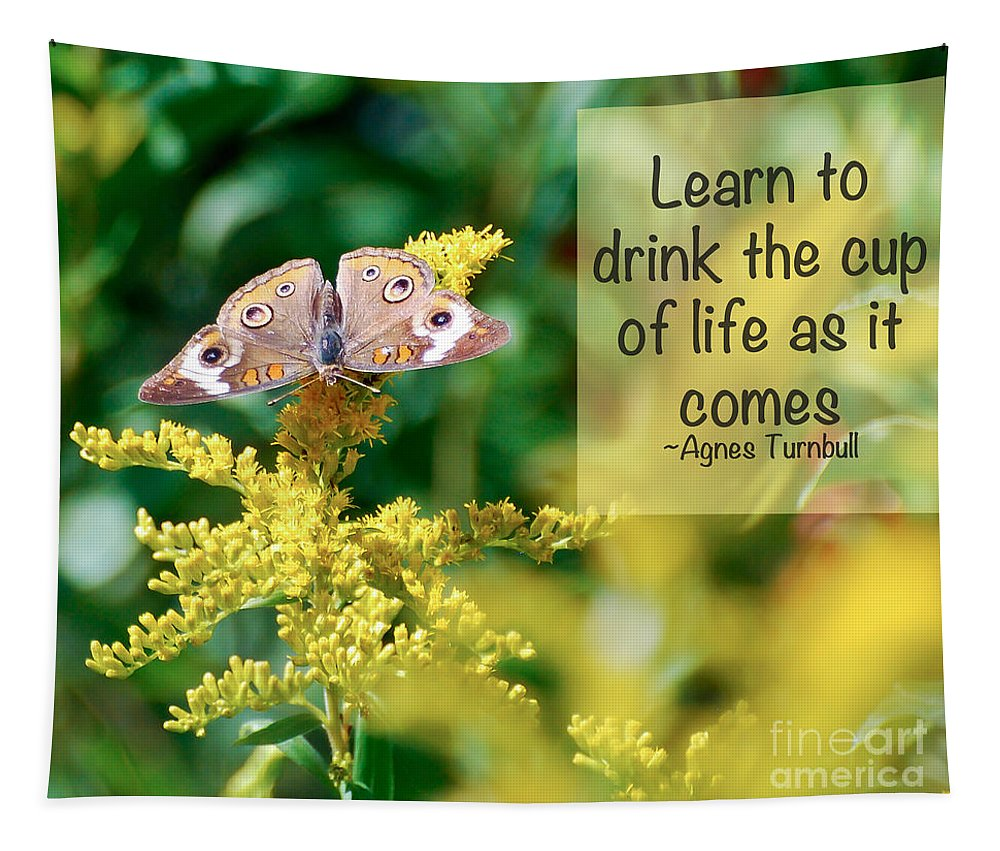 Common Buckeye Butterfly Tapestry featuring the photograph Life Lesson - As It Comes by Kerri Farley