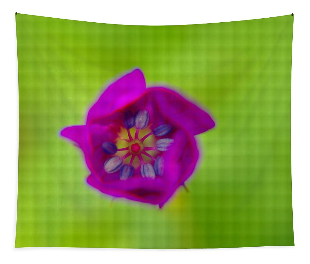 Flowers Tapestry featuring the photograph Like A Little Secret Unfolding by Jeff Swan