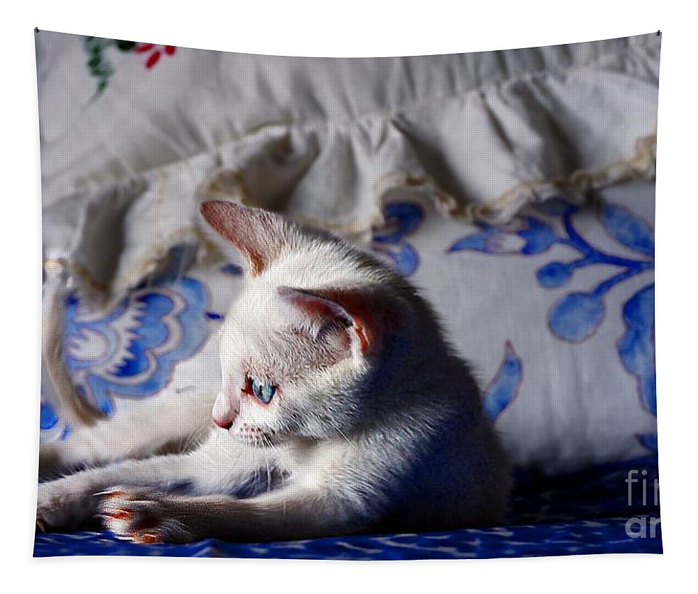 John+kolenberg Tapestry featuring the photograph Lil Blue by John Kolenberg