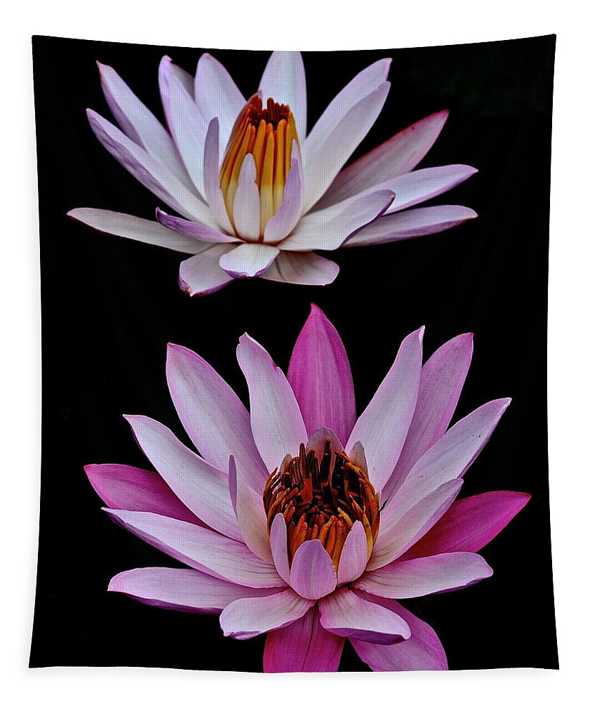 Water Tapestry featuring the photograph Lilies In Black by Frozen in Time Fine Art Photography