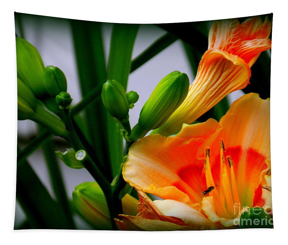 Art Tapestry featuring the photograph Lily by Linda Galok