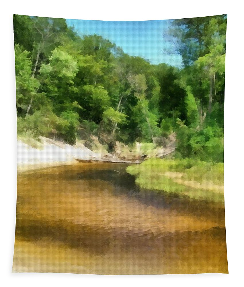 Nature Tapestry featuring the photograph Little Black Creek - Hoffmaster State Park by Michelle Calkins