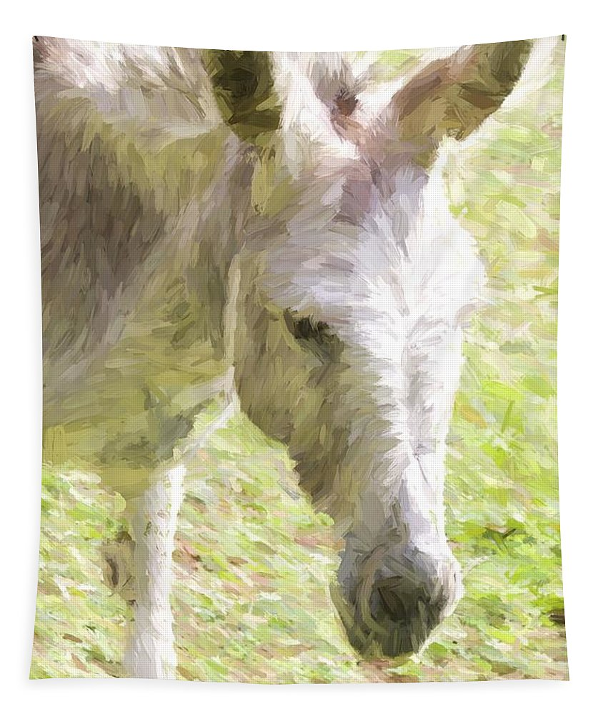 Burro Tapestry featuring the photograph Little Burro by Alice Gipson