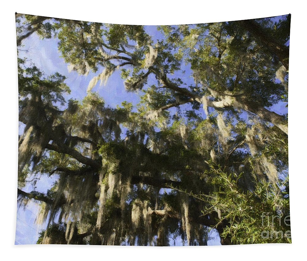 Live Oak Tree Tapestry featuring the photograph Live Oak Dripping With Spanish Moss by Dale Powell