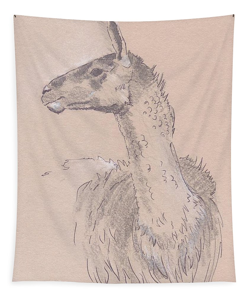 Llama Tapestry featuring the drawing Llama Drawing by Mike Jory