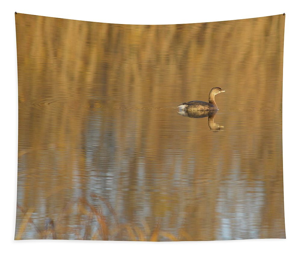Animal Tapestry featuring the photograph Lone Grebe by Bonfire Photography