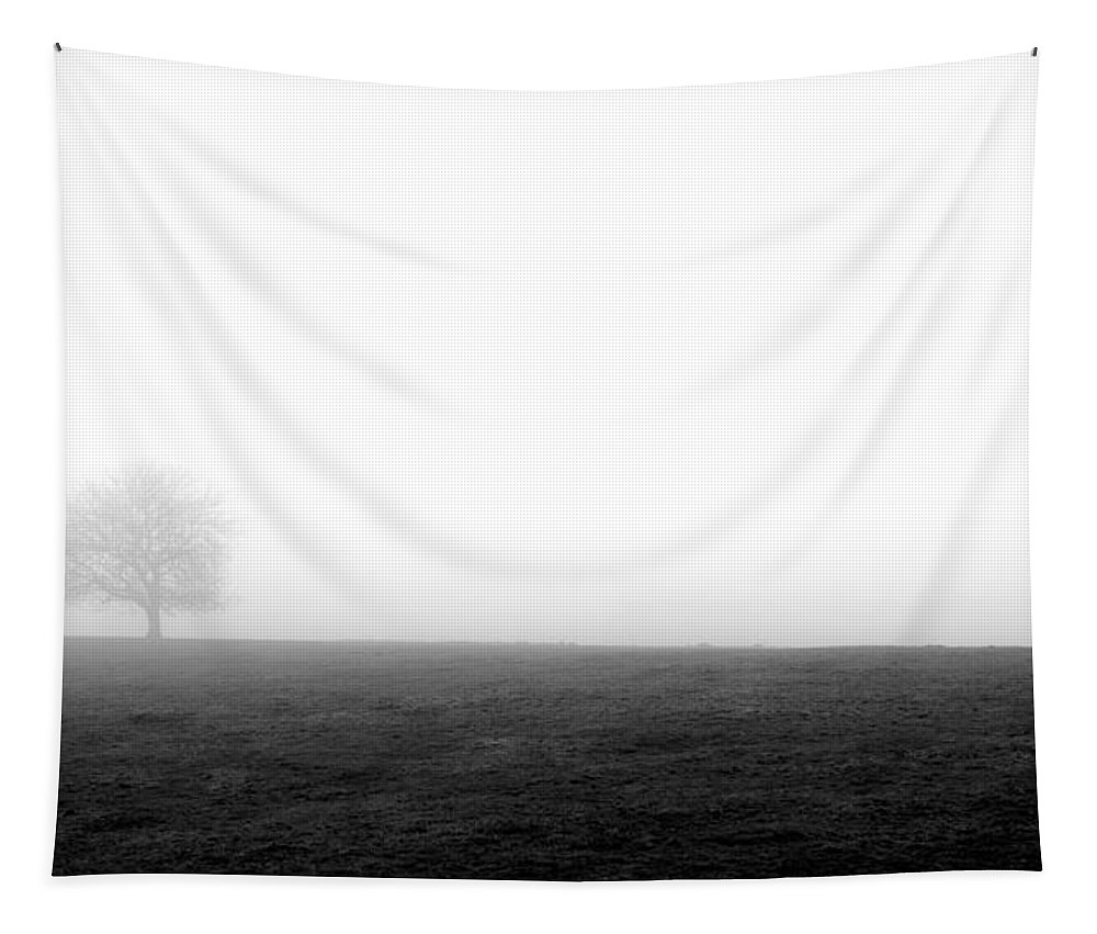 Misty Tapestry featuring the photograph Lone Tree by Nigel R Bell