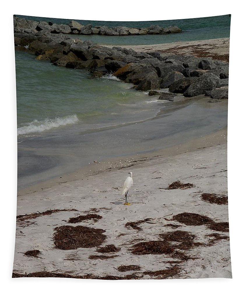 Bird Tapestry featuring the photograph Look Back Bird by Katie Beougher