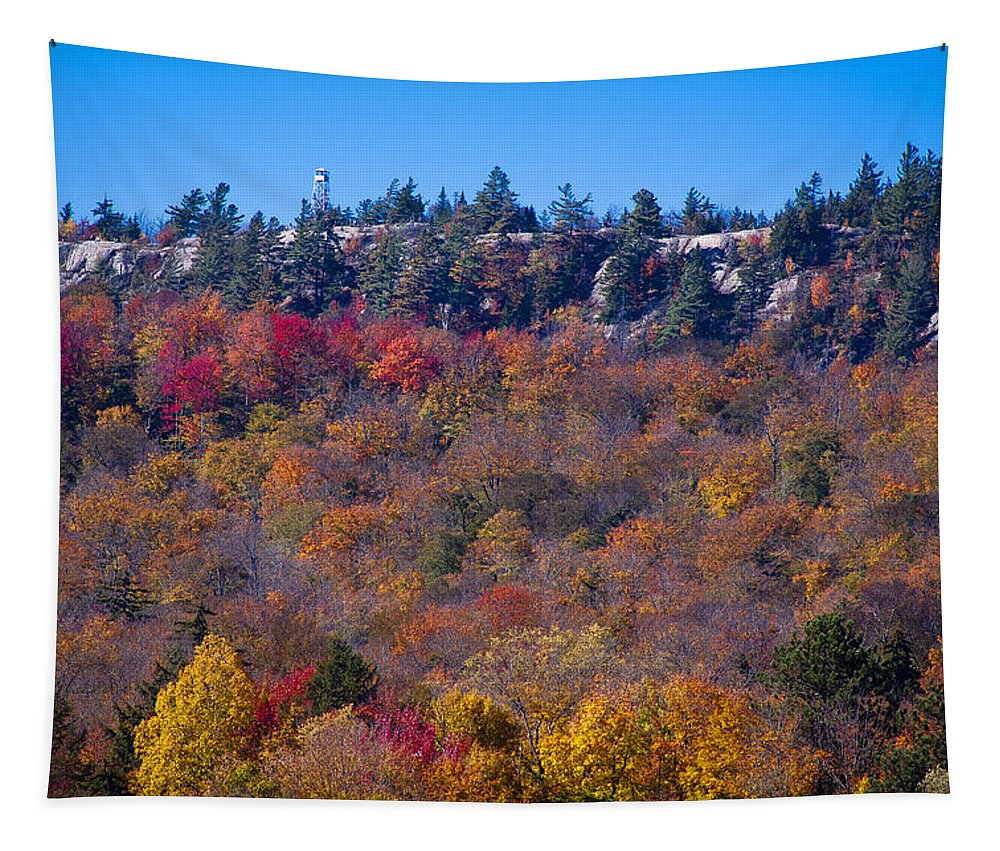 Adirondack's Tapestry featuring the photograph Looking At The Top Of Bald Mountain by David Patterson