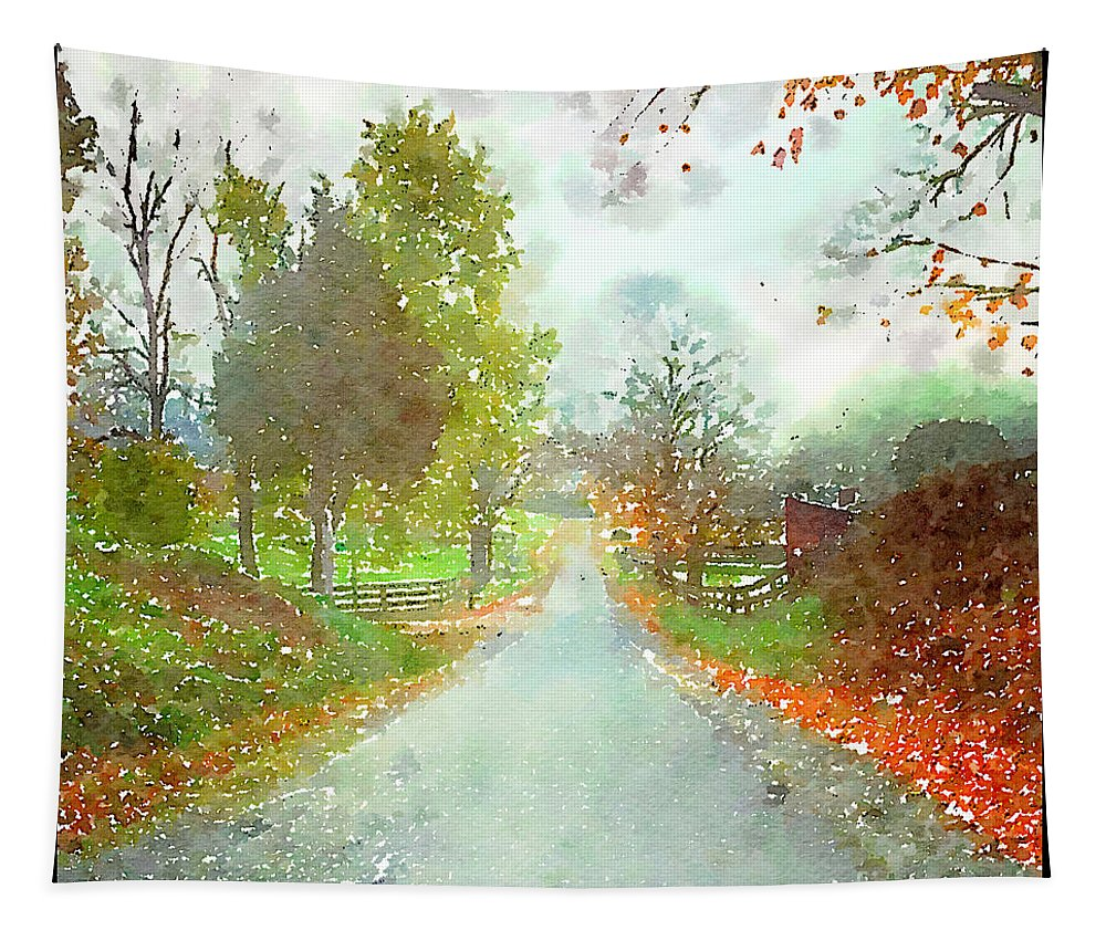 Country Road Tapestry featuring the photograph Looking Down The Road by Kerri Farley