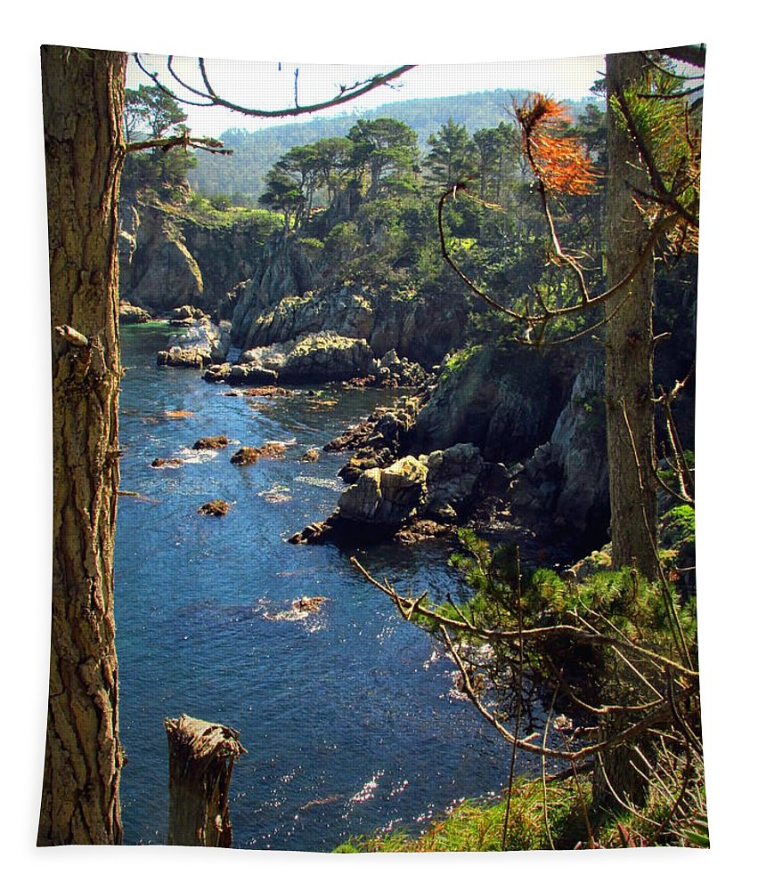 Point-lobos Tapestry featuring the photograph Looking Through The Trees At Point Lobos by Joyce Dickens