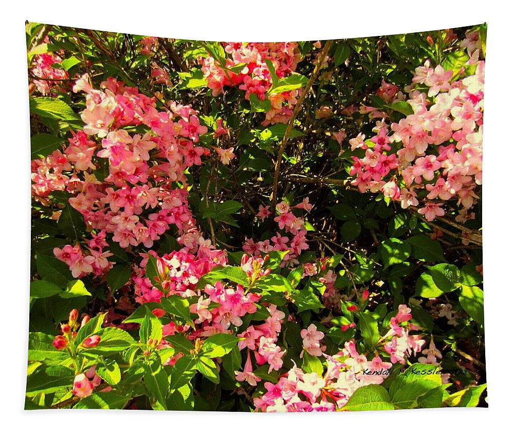 Pink Flowers Tapestry featuring the photograph Lost In Pink by Kendall Kessler