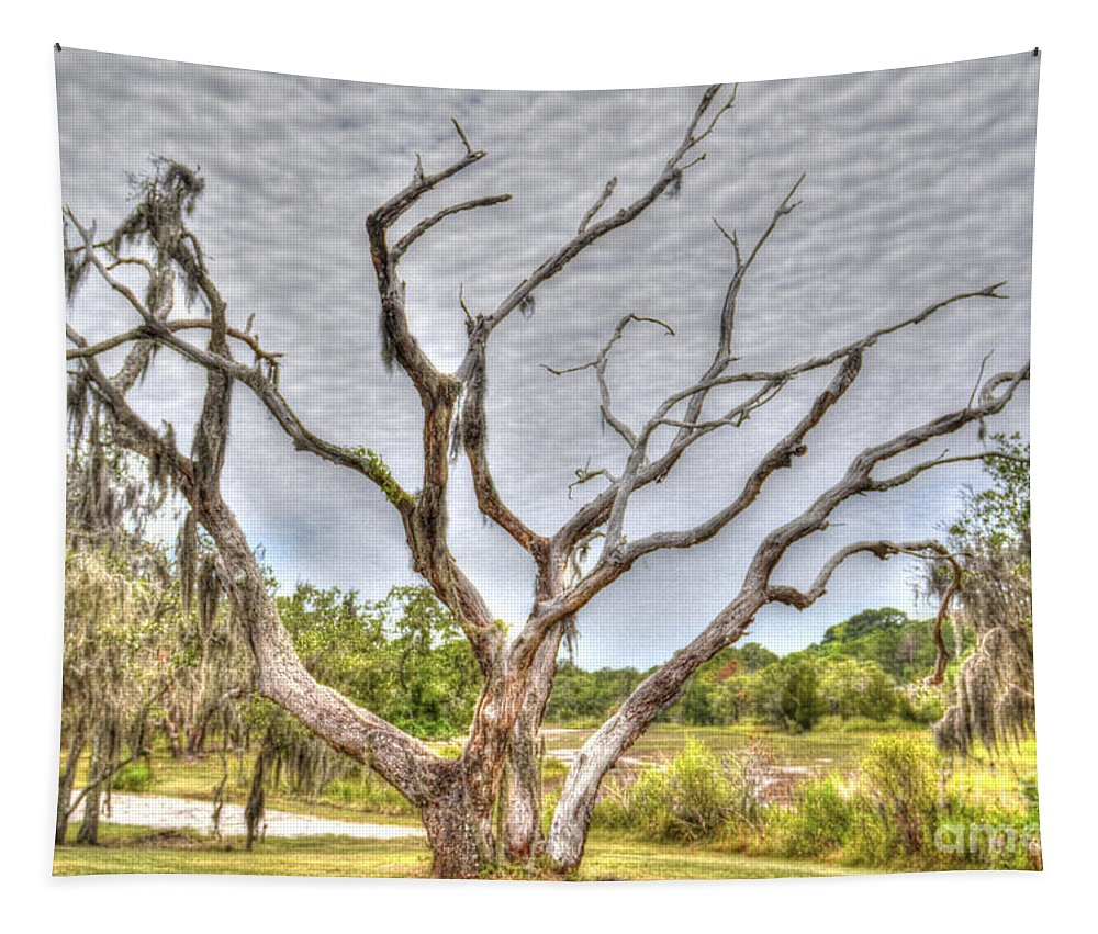 Sea Island Tapestry featuring the photograph Lowcountry Marsh On Sea Island by Dale Powell