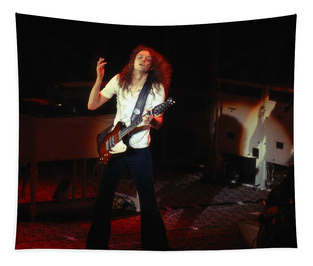 Lynyrd Skynyrd Tapestry featuring the photograph Ls #12 by Ben Upham