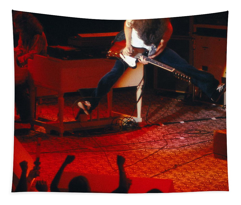 Lynyrd Skynyrd Tapestry featuring the photograph Ls #17 Crop 2 by Ben Upham