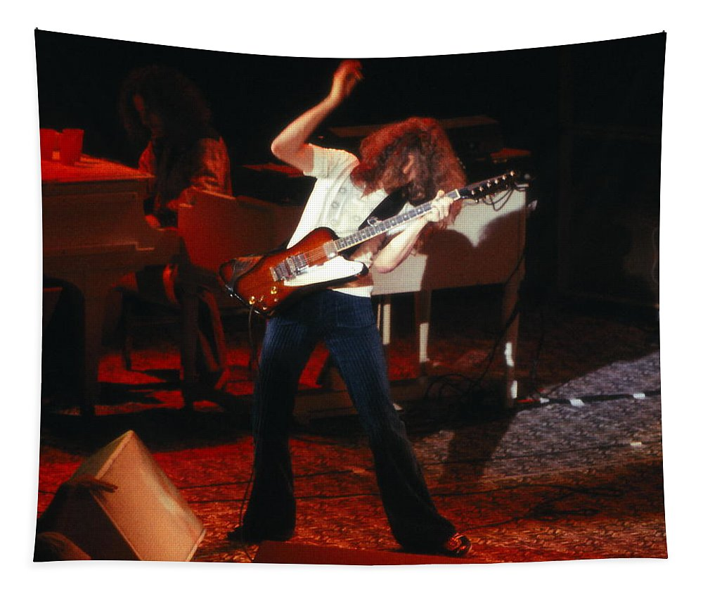 Lynyrd Skynyrd Tapestry featuring the photograph Ls#15 Crop 2 by Ben Upham
