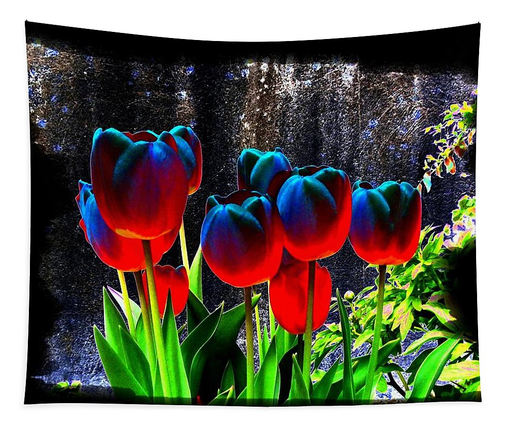 Lustrous Tulips Tapestry featuring the photograph Lustrous Tulips by Will Borden