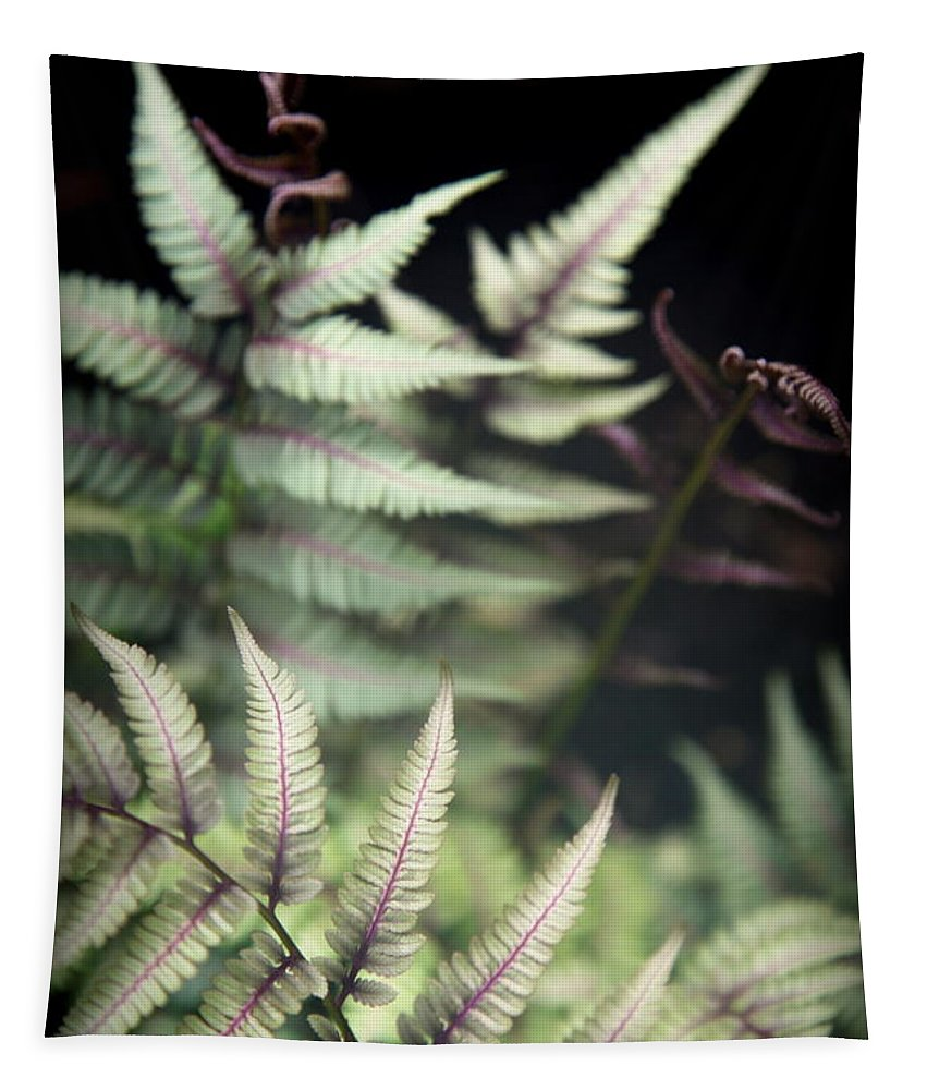 Magical Forest Tapestry featuring the photograph Magical Forest 1 by Karen Wiles