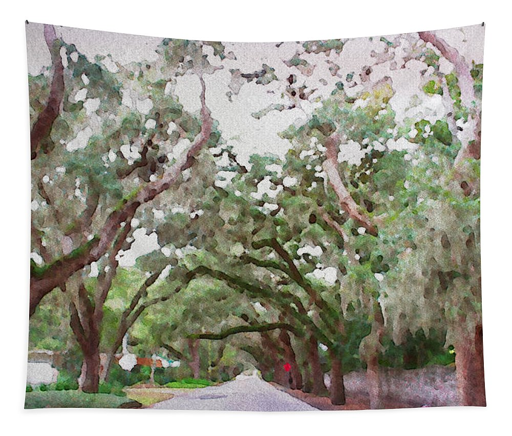 Magnolia Avenue St Augustine Florida Street Trees Treed Hammock Oaks Alicegipsonphotographs Tapestry featuring the photograph Magnolia Avenue by Alice Gipson