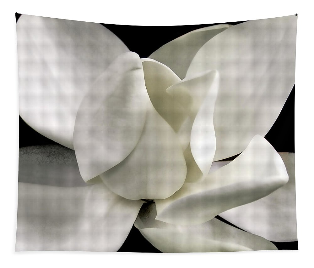 Magnolia Tapestry featuring the photograph Magnolia Bloom by David Patterson