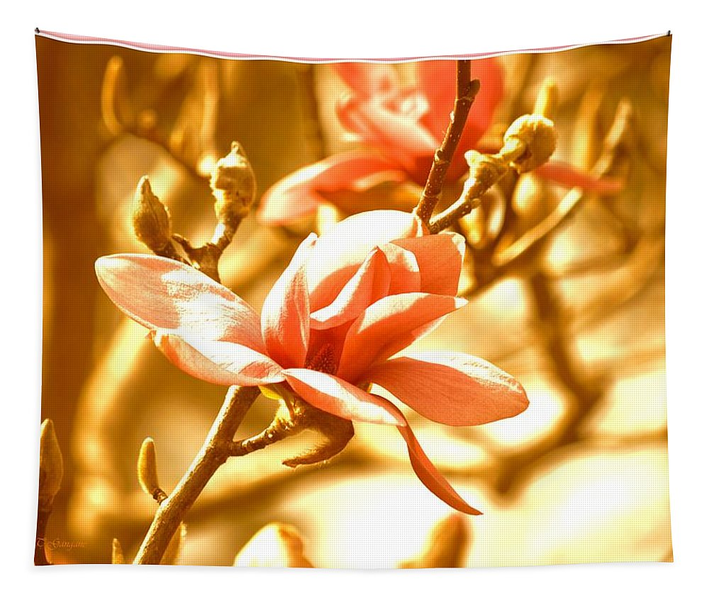 Magnolia Dreams Tapestry featuring the photograph Magnolia Dreams by Sonali Gangane