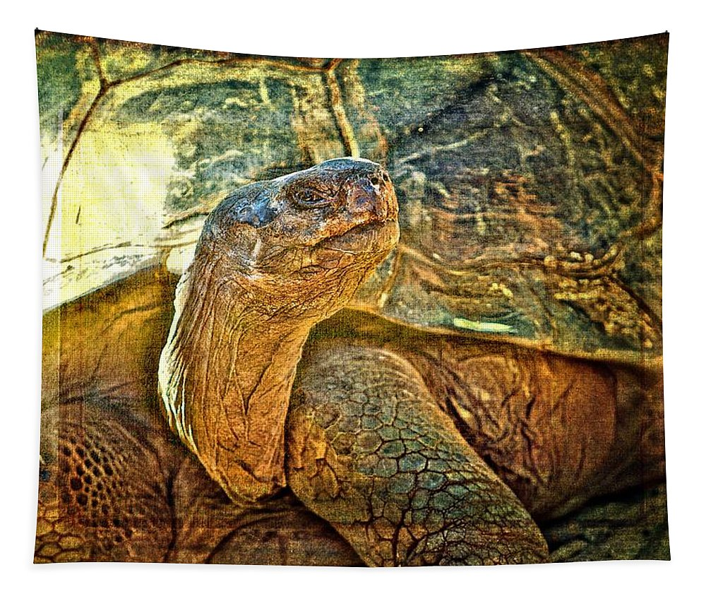 Tortoise Tapestry featuring the photograph Majestic Tortoise by Alice Gipson
