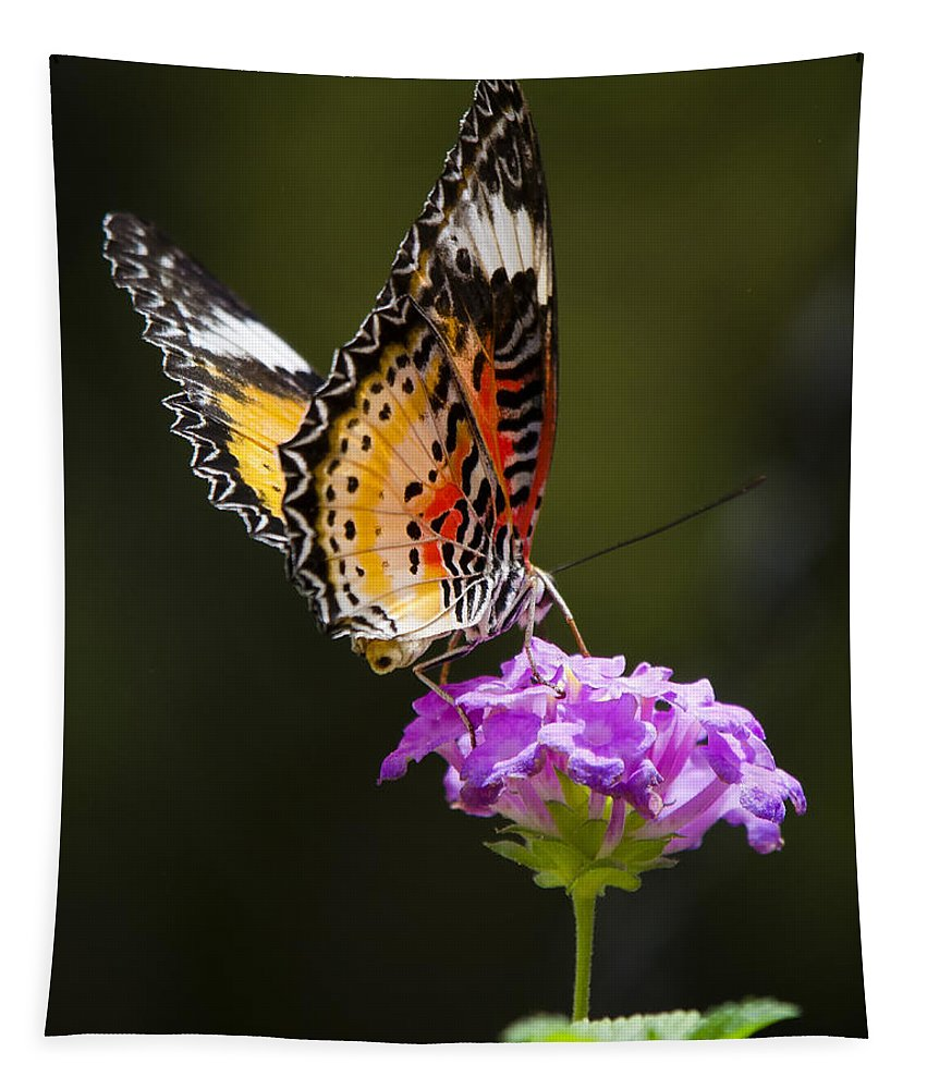 Malay Lacewing Butterfly Tapestry featuring the photograph Malay Lacewing On A Flower by Saija Lehtonen