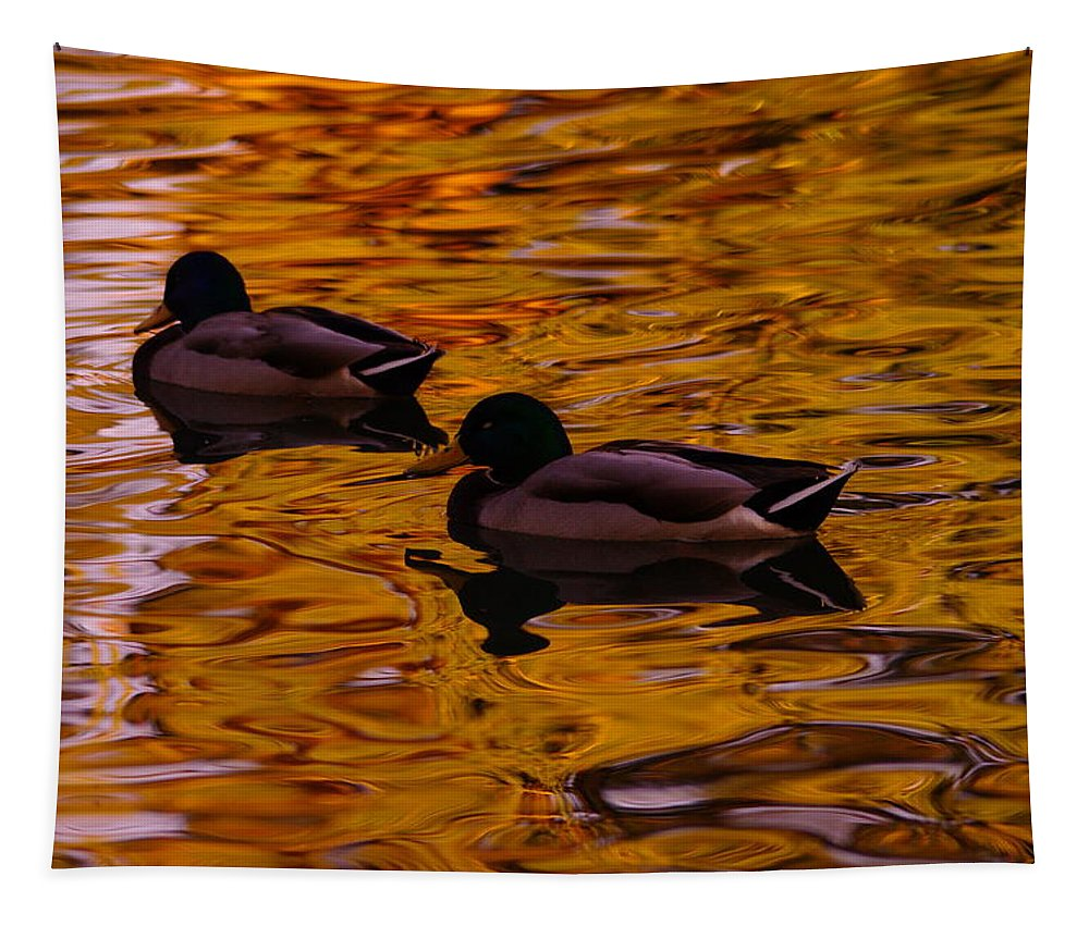 Ducks Tapestry featuring the photograph Mallards On Golden Water by Jeff Swan