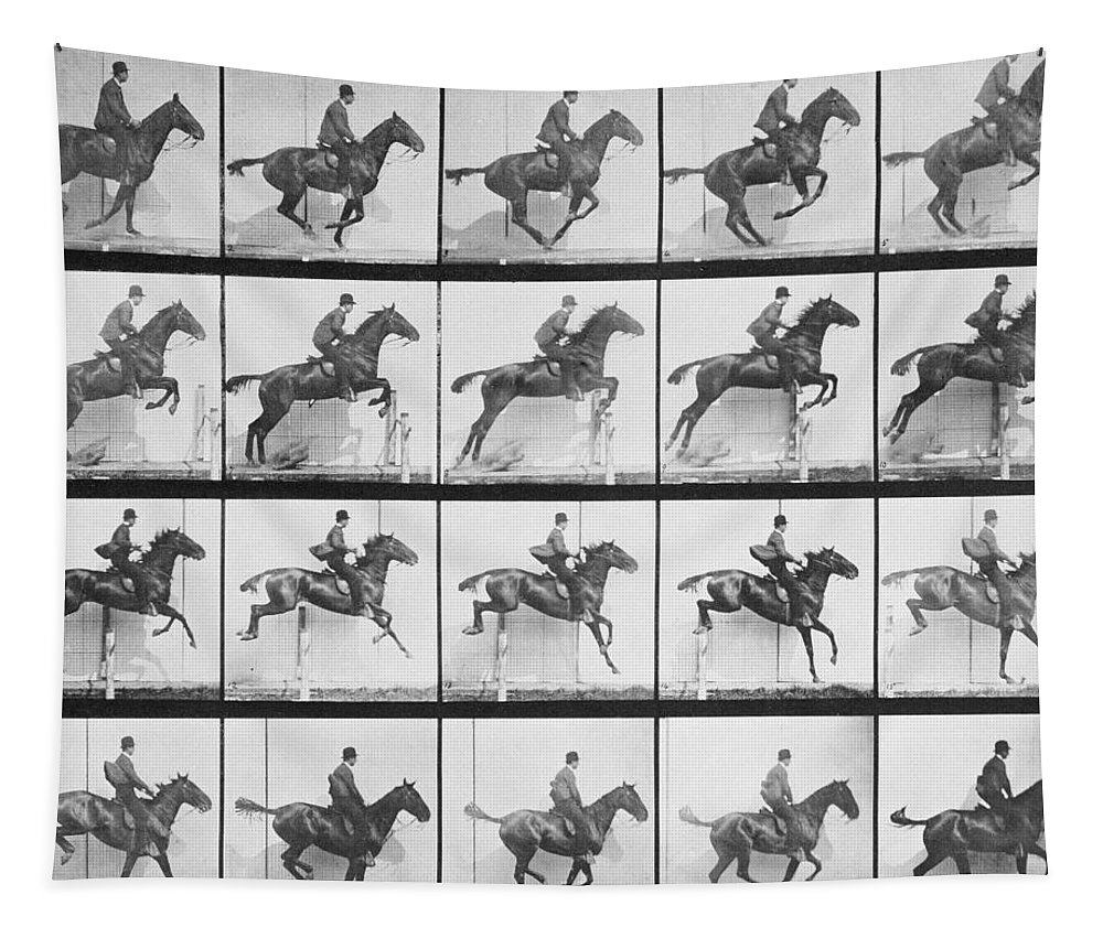 Muybridge Tapestry featuring the photograph Man And Horse Jumping A Fence by Eadweard Muybridge