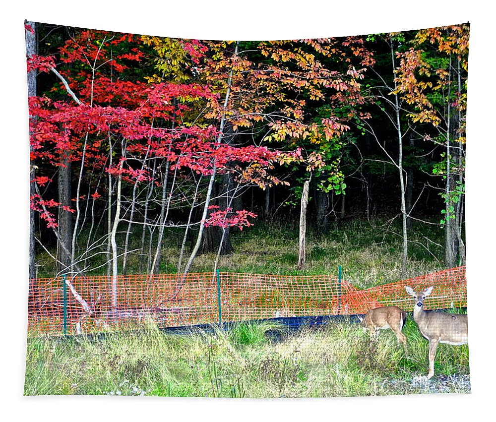 Nature Tapestry featuring the photograph Man Ruins Nature by Frozen in Time Fine Art Photography