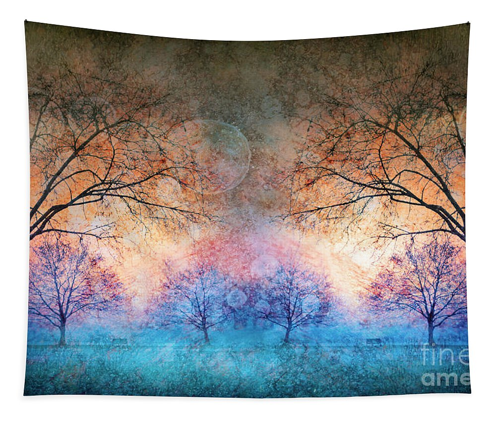 Moons Tapestry featuring the photograph Many Moons by Tara Turner