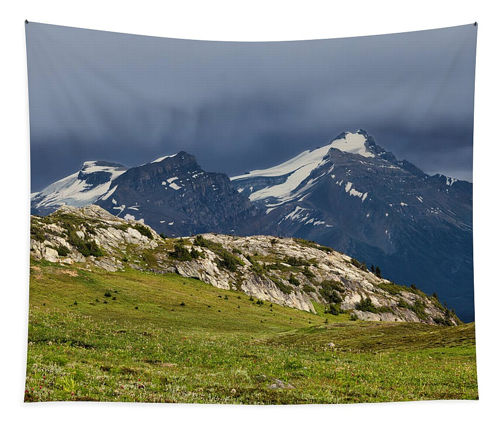 Banff Tapestry featuring the photograph Marmot Meadow by Kathleen Bishop