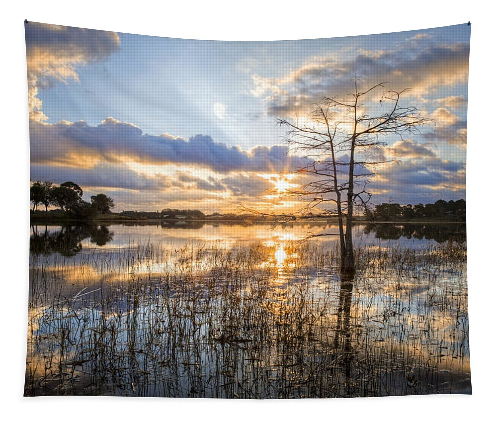Clouds Tapestry featuring the photograph Marsh Sunrise by Debra and Dave Vanderlaan